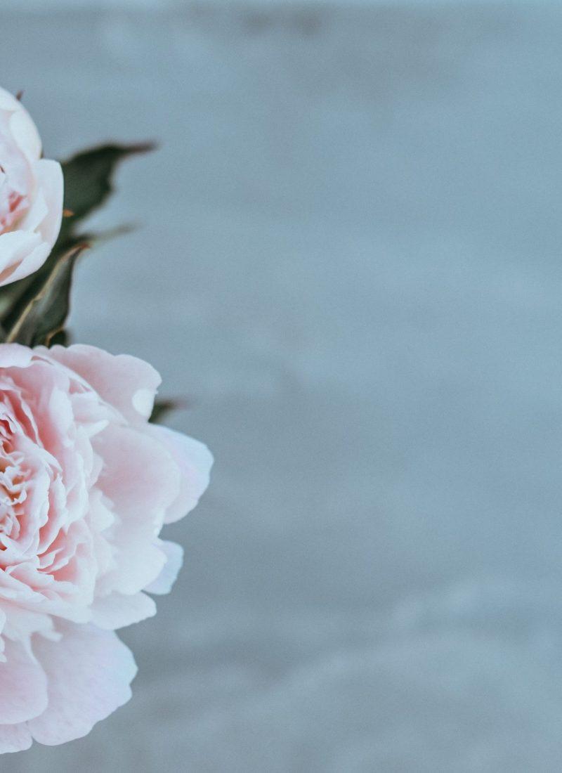 Dia da mãe. Os cuidados anti-aging a oferecer